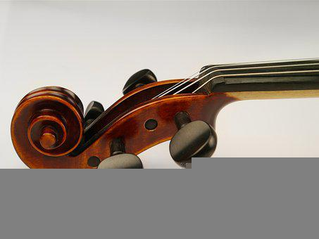 Violin, Instrument, Snail, Orchestral Instrument, Music