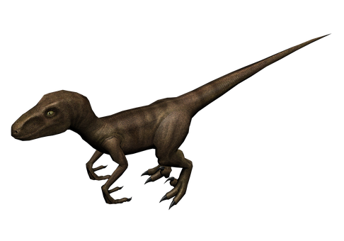 Raptor, 3d Model, Render, Dinosaur