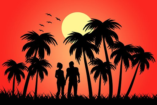 Silhouette, Palms, Couple, Sunset, Trees, Tropical