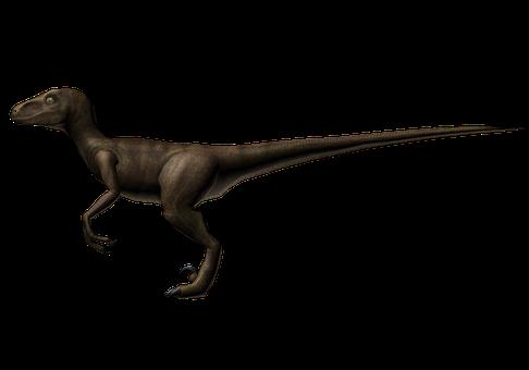 Dinosaur, Raptor, Creature, Prehistoric, 3d Model