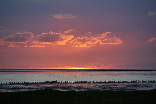 Sunset, Sea, Horizon, Wadden Sea, Dusk, Evening