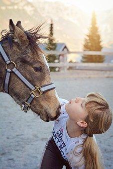 Foal, Girl, Young Animal, Horse, Pony, Little Girl