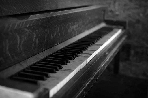 Piano, Organ, Keyboard, Ivory, Ebony, Keys, Black Keys