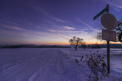 Snow, Trees, Road Signs, Winter, Wintry, Snowy