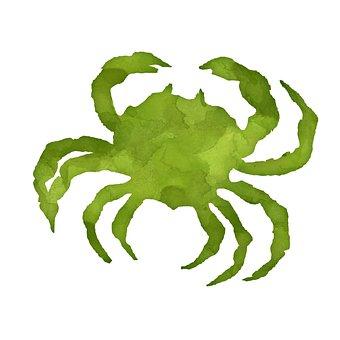 Crab, Crustacean, Silhouette, Animal, Painting