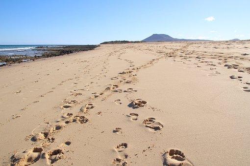 Beach, Footprints, Sand, Coast, Coastline, Shore