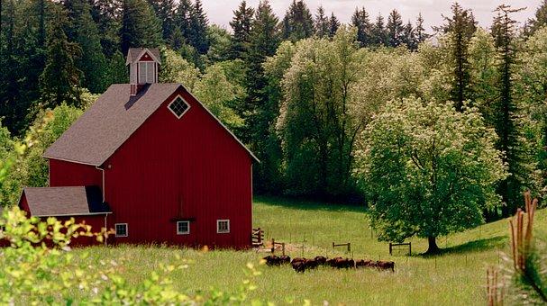 Barn, Farm, Farmhouse, Meadow, Red Barn, Country