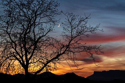 Sunset, Nature, Fall, France, Savoie, Gresy Sur Isère
