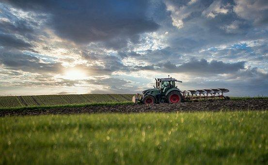 Tractor, Plough, Agriculture, Field, Farm, Farmland