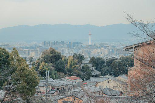 Buildings, Houses, Tower, Roofs, Trees, View, Panorama