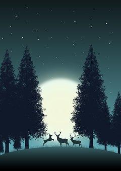 Deer, Moon, Forest, Silhouette, Animals, Wildlife