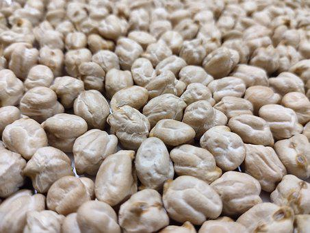 Whitegram, Seed, Food, Crop, White, Healthy, Closeup
