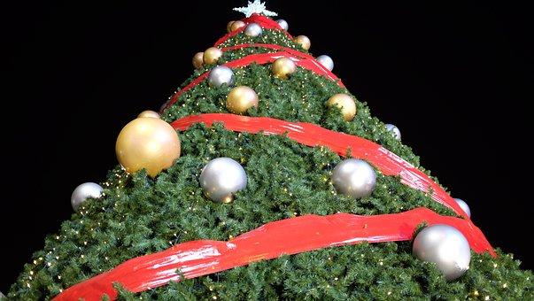 Christmas Tree, Christmas, Tree, Holiday, Xmas