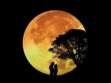 Lovers, Pair, Moon, Moonlight, Romance, Love, Together