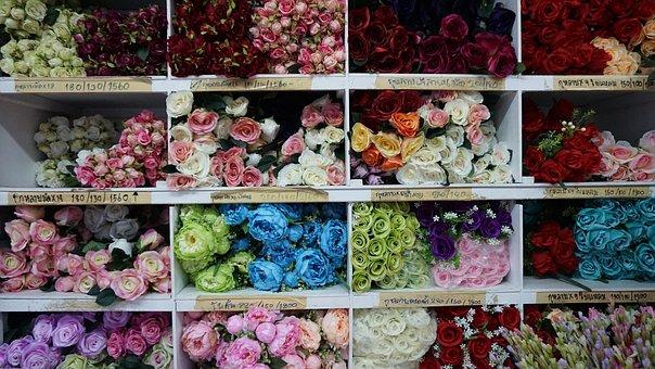 Flower, Rose, Sell, Floral, Blossom, White, Nature