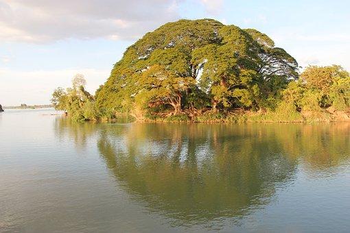 Tree, Mekong, Mirror, Don Det, Laos, Si Phan Don