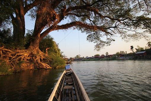 Tree, Water, Don Det, Laos, Si Phan Don, 4000 Islands