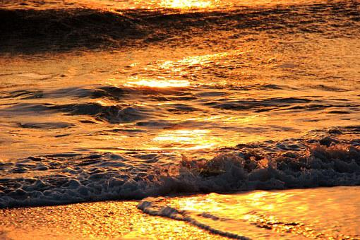 Surf, Wave, Sea, Ocean, Summer, Water, Beach