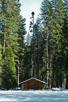 Yosemite, Log House, Mountain Hut, Arboretum, Woods