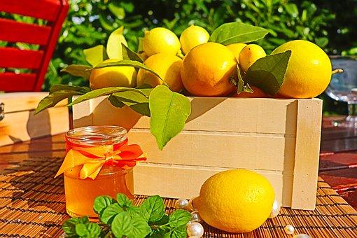 Lemon, Mint, Citrus, Fruits, Healthy, Juicy, Sour