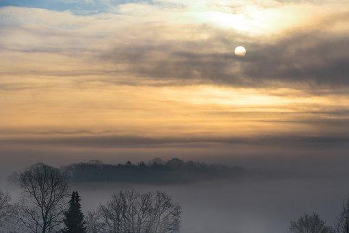 Sunrise, Fog, Trees, Sun, Dawn, Morning Fog, Forest