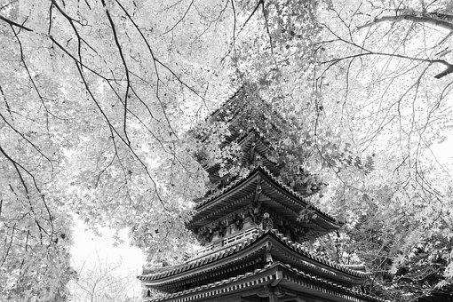 Temple, Five Story Pagoda, Pagoda, Trees, Building