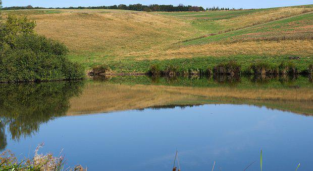 Pond, Water, Bank, Fields, Hills, Grass, Grassland