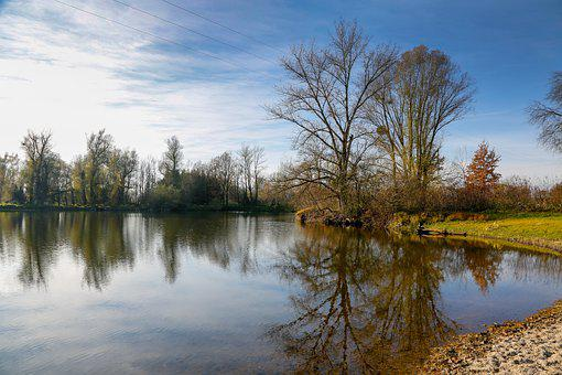 Lake, Trees, Bank, Reflection, Water Reflection, Water