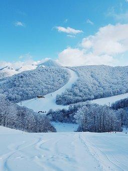 Japan, Snow, Winter, Nature, Frozen, Wintry, December