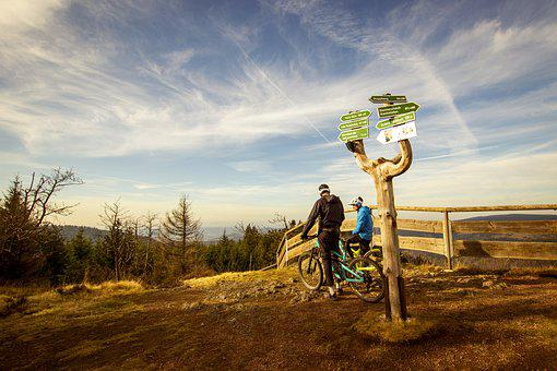 Forest, Hiking, Thuringian Forest, Mountain Bike