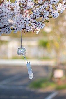 Furin, Wind Chime, Hanging, Japanese Wind Chime, Sakura