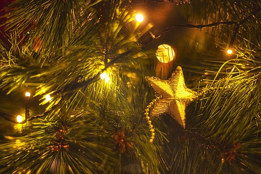 Christmas Tree, Ornaments, Star, Decorations