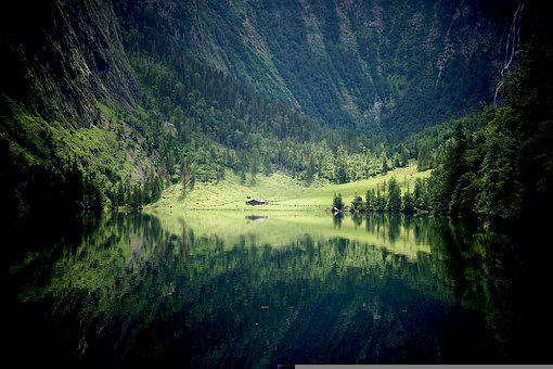 Lake, Mountains, Trees, Fields, Meadow, Conifers