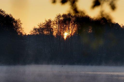 Sunrise, Fog, Lake, Trees, Forest, Winter, Cold