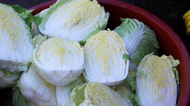 Chinese Cabbage, Kim Jang, Republic Of Korea