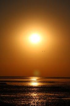 Sunset, Sea, Horizon, Sun, Sunlight, Dusk, Evening