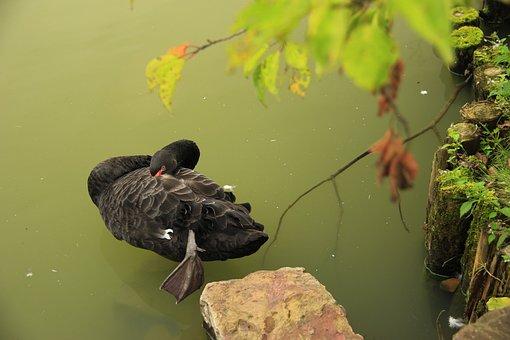 Wuxi, Turtlehead Park, Jiangnan