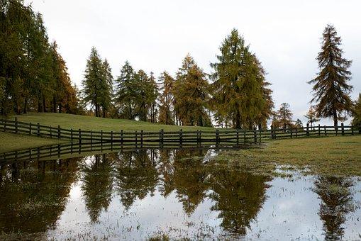 Salten, Autumn, South Tyrol, Törggelen, Mirroring