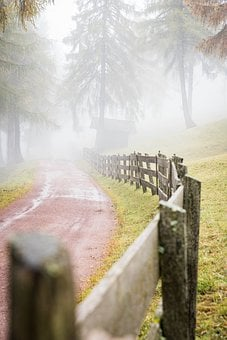 Road, Pathway, Trail, Fence, Trees, Fog, Forest, Leaves