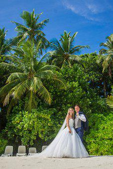 Pair, Before, Wedding, Beach, Sand, Palm Trees, Bride