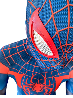 Spider-man, Costume, Cosplay, Superhero, Character