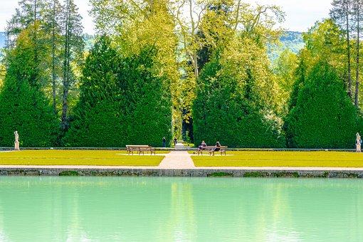 Tree, Wood, Plant, Plants, Fir, Austria, Colorimage