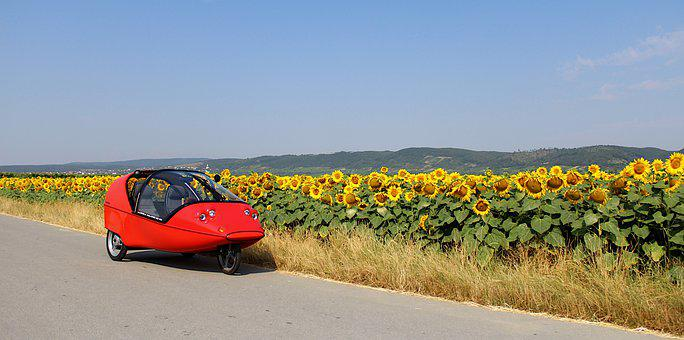 Vehicle, Sunflower, Travel, Vacations, Tourism, Summer