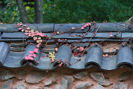 Korea, House, Traditional, Folk, Asia, Home, Leaves