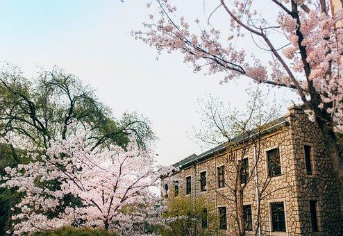 Seoul, Dongjak, Heukseok-dong, Chung-ang University