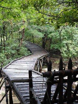 Nature, Mungyeong Saejae, Republic Of Korea, Mungyeong