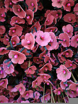 Artificial Flowers, Pink, Flowers, Clearance