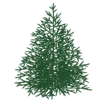 Gran, Christmas Tree, Tree, Christmas, Christmas Time