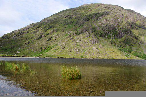 Ireland, Hill, Lake, Herbs, Green, Water, Nature