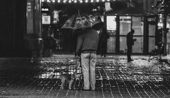 Street, People, City, Rain, Old, Black White, Couple